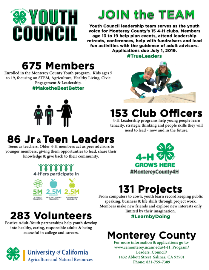 join Youth Council flyer